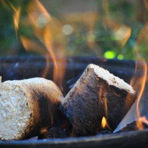 Carvão, Gás e Pellets